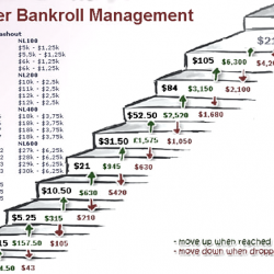 How to build and manage your bankroll