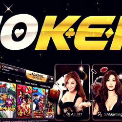 Young online casino Joker: deposit and withdrawal of money, bonuses, loyalty program, games